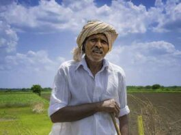 Indian Farmer - Image From pixabay.com