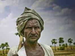 Why Indian farmers are so angry about the Modi government's agricultural reforms